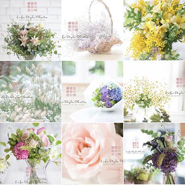 share-flower.jpg